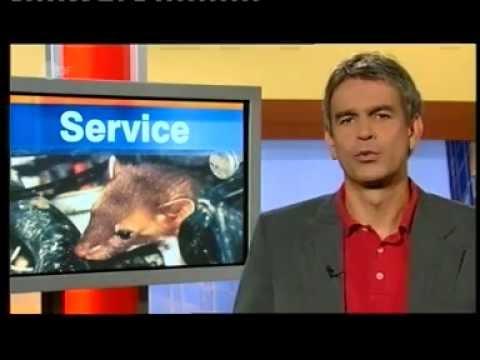 STOP&GO | ZDF Drehscheibe