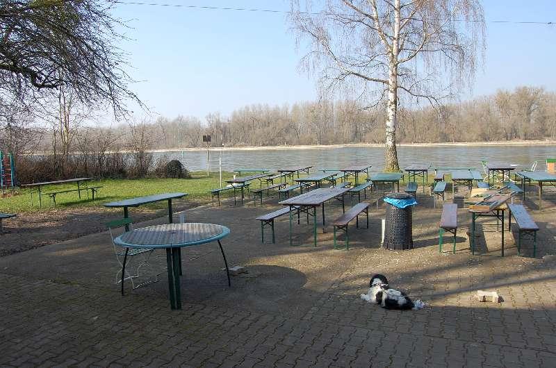 2014_03_07 Neuburgweier Rhein 02