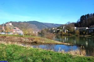 2014_03_09 Burg_Lachsbachmuendung