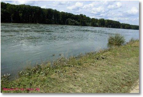 2014 08 08 Peter Pan Leopoldshafen Hochwasser 1