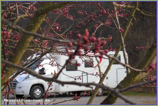 2015-03-19 Blick auf Stellplatz02