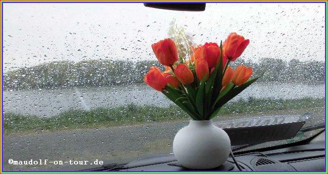 2015-04-25 Regen
