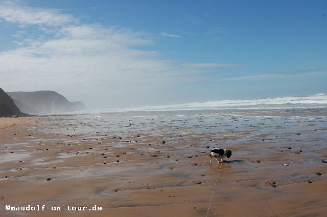 2015-10-28 Praia da Cordoama Lissy 01