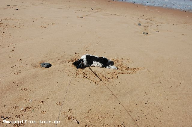 2015-10-28 Praia da Cordoama Lissy 03