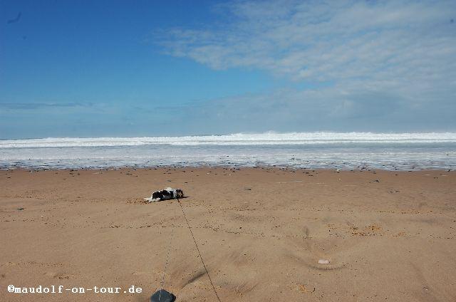 2015-10-28 Praia da Cordoama Lissy 04