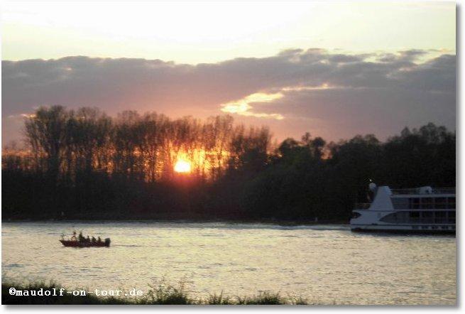 2016-04-08 Sonnenuntergang am Rhein 1