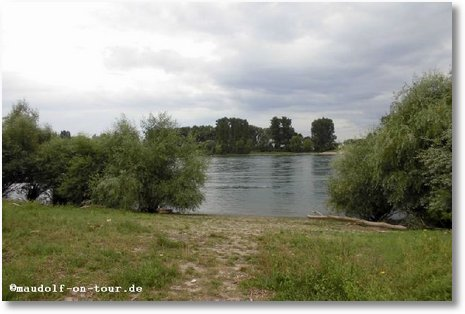 2016-07-28 Natorampe Rhein