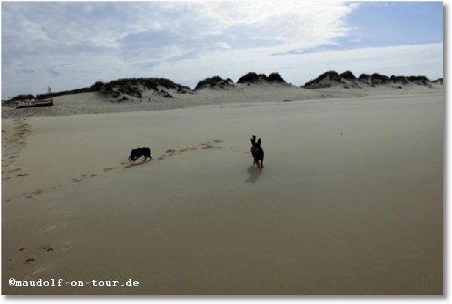 2016-10-18 Praia do Osso da Baleia Kax + Kelly 3