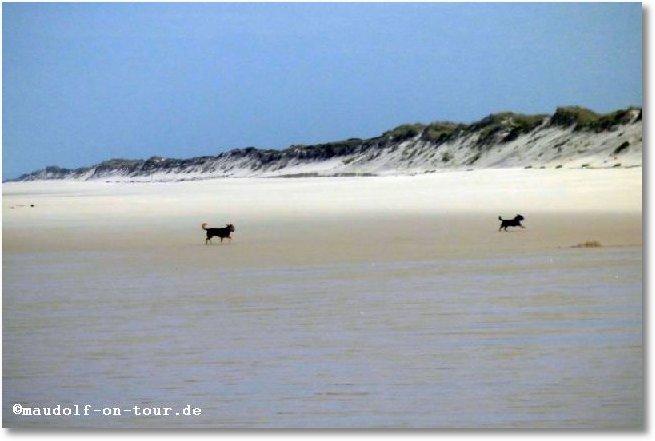 2016-10-18 Praia do Osso da Baleia Max + Kelly 4