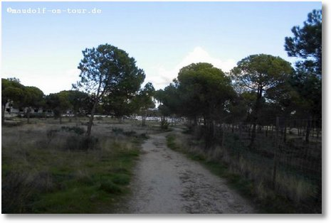 2016-11-24 Stellplatz Falesia Weg zur Praia da Falesia 2