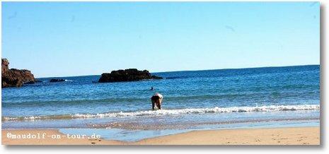 2017-01-16 Praia da Ingrina Paul im Meer 1