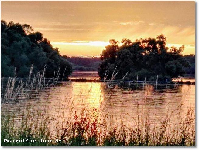 2017-06-11 Rheinhausen Abendstimmung 2