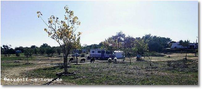 2017-11-21 Route 66 Moncarapacho 1