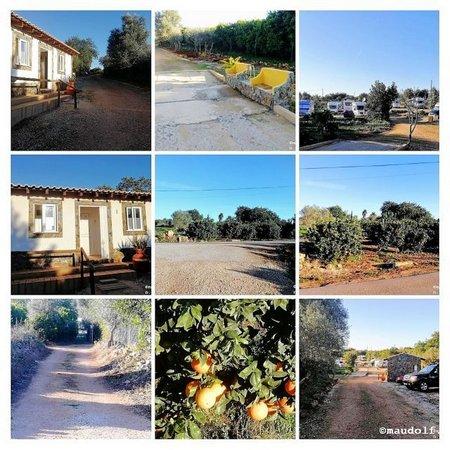 2019-01-26 Rancho Belchior V-V-COLLAGE