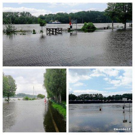 2019-05-22 Peter Pan Hochwasser