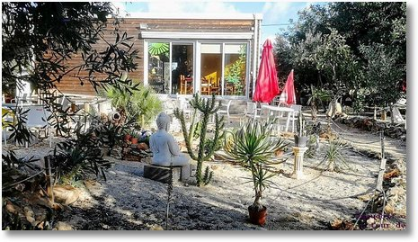 2019-11-15 Garten Rancho 1