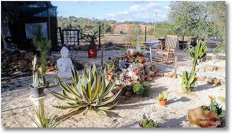 2019-11-15 Garten Rancho 2