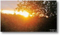 2020-01-09 Sonnenuntergang