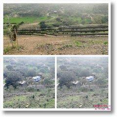 2020-02-07 Übersicht Alpakafarm 2