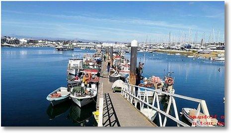 2020-02-11 Fischereihafen 2